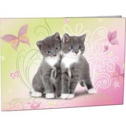 Desky na číslice Stil Cats