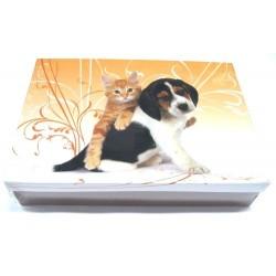 Školní krabice do lavice Kočka a pes