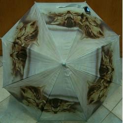 Deštník holový Blue Drop A843B Koťata