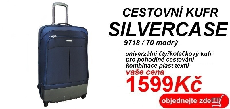 silvercase 9718