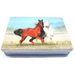 Školní krabice do lavice Koně (modrá)