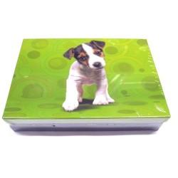 Školní krabice do lavice Pes S zelená - (snížená velikost)
