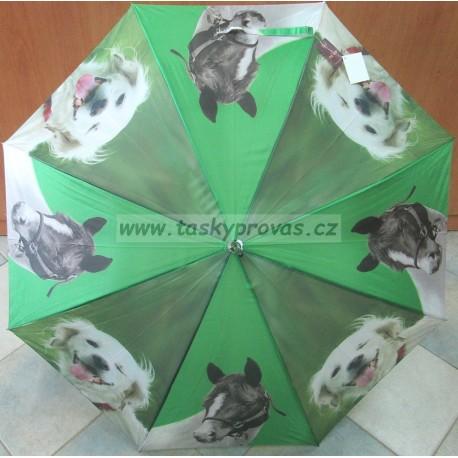 Deštník holový automat Nuvem 4750 zelený